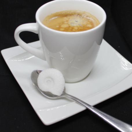 ammonite blanc cafe