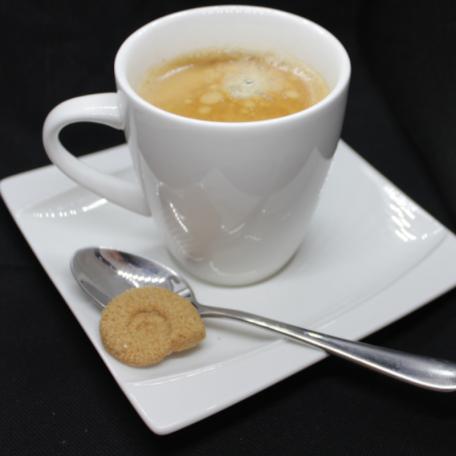 ammonite roux cafe